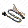 Picture of Car 16pin Audio Wiring Harness With Canbus Box For Renault Mégane II (2002–2009) Aftermarket Stereo Installation Wire Adapter
